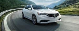 2019 Acura TLX Performance
