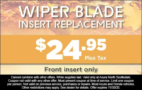 Wiper Blade Insert Replacement - $24.95 front insert only