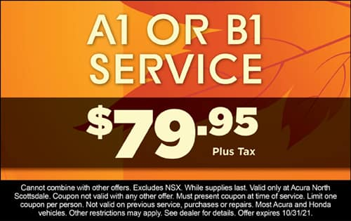 A1 or B1 Service $79.95