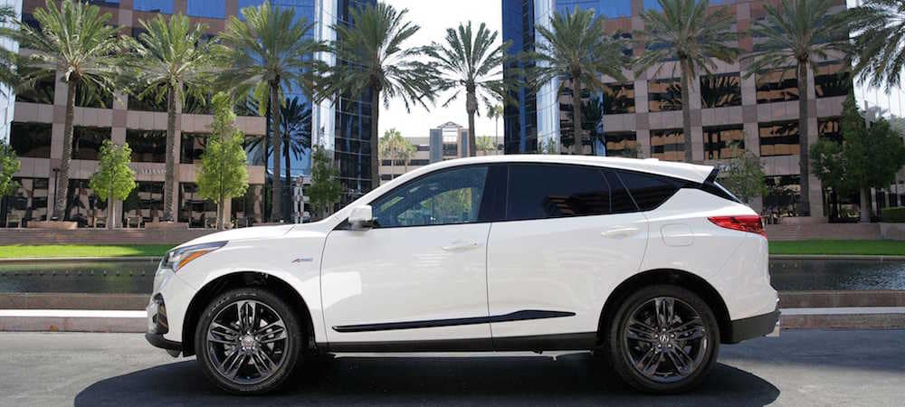Side view of white RDX parked in front of palm trees
