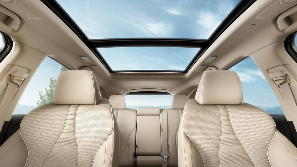 2019 Acura RDX Interior Seating and Panoramic Roof