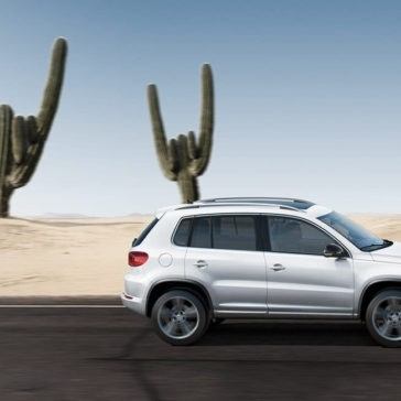 2017 Volkswagen Tiguan Cactus