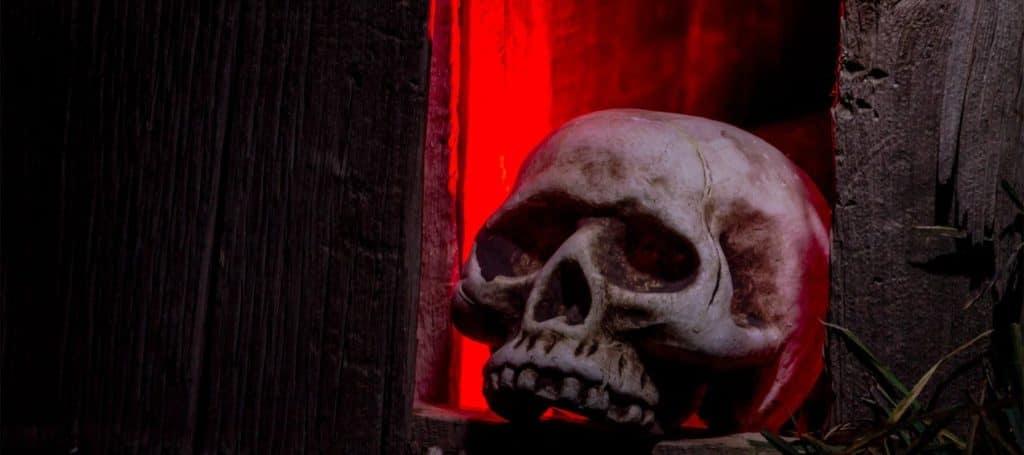 Halloween skull decoration in window