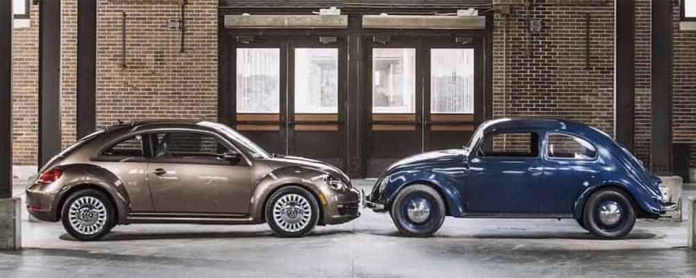 Modern and Vintage Volkswagen Beetles Nose to Nose