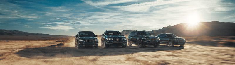 BMW X Range
