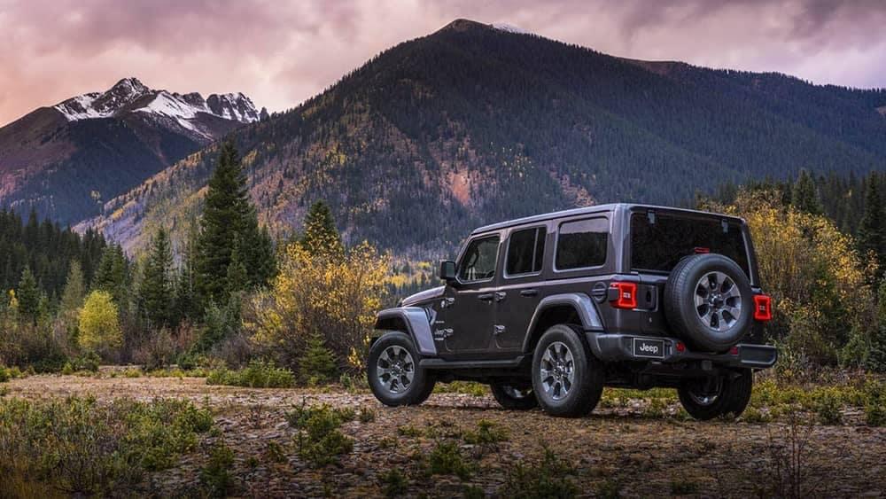 rear exterior of 2019 Jeep Wrangler