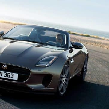 2020 Jaguar F-Type Grill