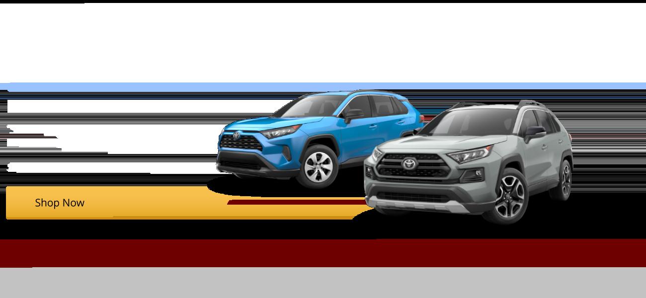 The All-New Redesigned 2019 RAV4