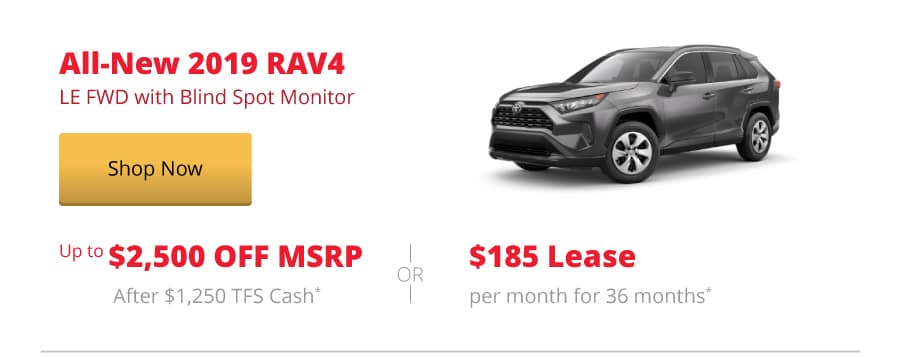 All-New 2019 RAV4 LE FWD with Blind Spot Monitor