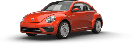 2017-beetle