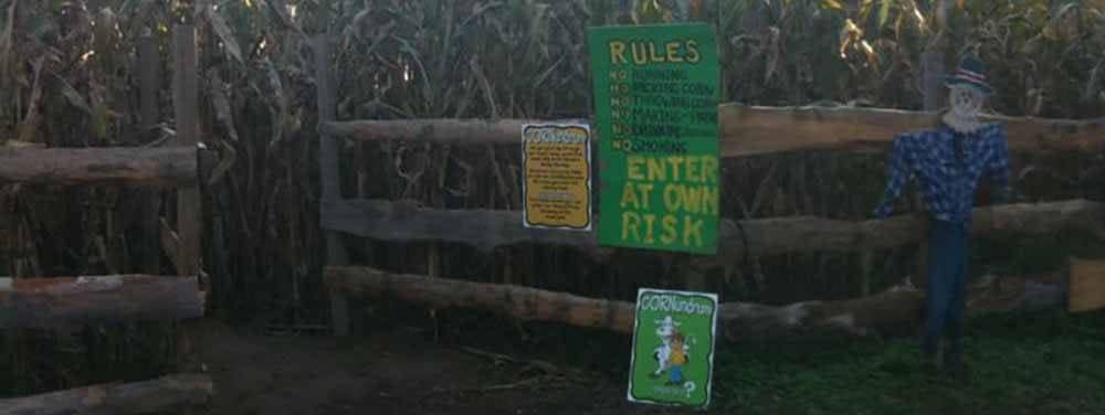 Cooper Family Farms Corn Maze
