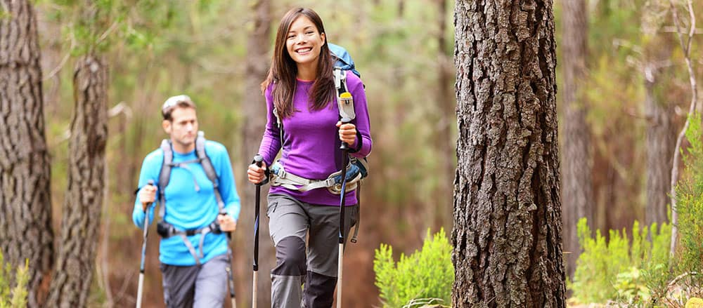 Hikers in forest banner