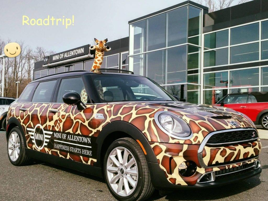 Mini Of Allentown >> Mini Of Allentown Supports The Lehigh Valley Zoo Mini Of