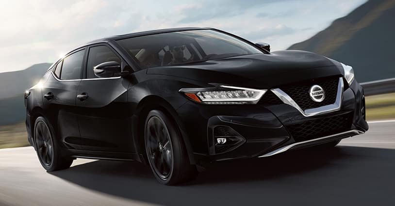 New 2019 Maxima Nissan South of Union City