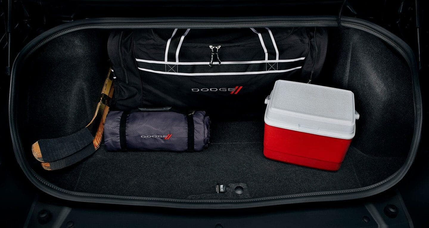 2019 Dodge Challenger Storage