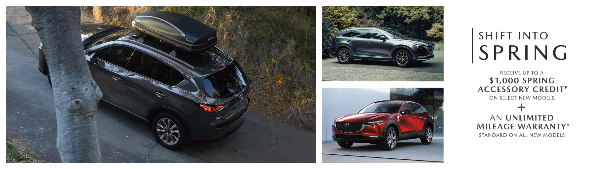 Shift Into Spring @ Palladino Mazda