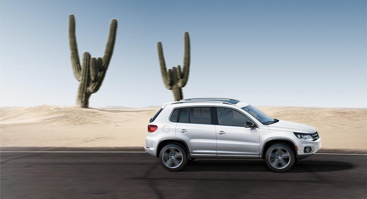 2017 Volkswagen Tiguan-Cactus