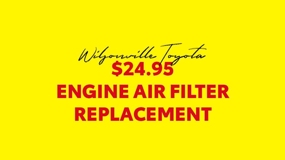 wiltoy-february-engine-air-filter